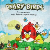 Angry Birds Picnic