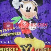 Mickey Flight