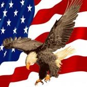 Selimut Rosanna American Eagle