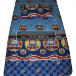 Thomas Biru 100x200 T.25 Rp. 75,000
